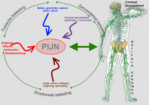 mnt-pain-circle